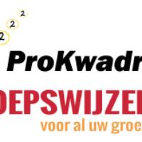 Schemerstad en LeidenWalk naar 2021, Leidse Draaiorgeldag en Verhalen van de stad naar najaar